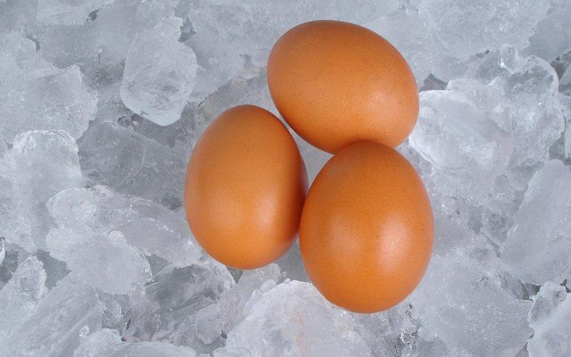 Egg freezing   The Andrology Corner